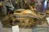 museum-zizkov_071