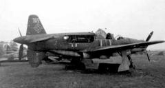 Do335-29f