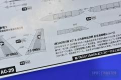 F-15J-PLATZ-015