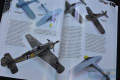 Fw-190-10