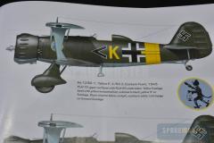 Henschel-Hs-123-008