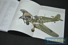 osprey-018