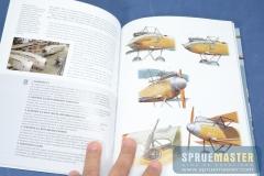 osprey_013