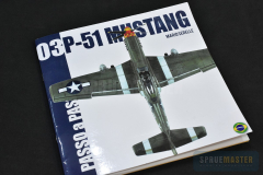 P51-Mustang-001