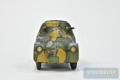 PA-Turtle-II-05