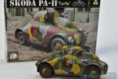 PA-Turtle-II-18