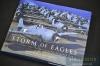 storm-of-eagles-01