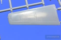 TT-1-Pinto-SPR_0669