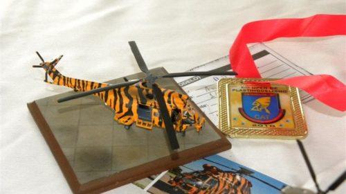 Meu modelo premiado - Medalha de Ouro - Helicópteros